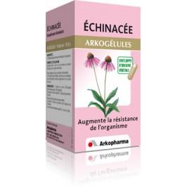Echinacée (bt 45)