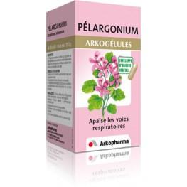 Pelargonium (bt 45)