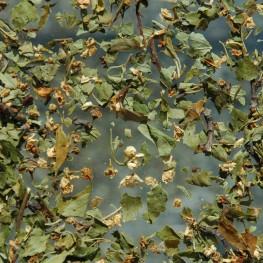 Aubépine fleurs (100g)
