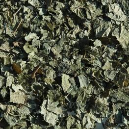 Cassis feuille (100g)