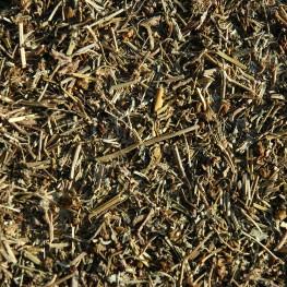 Chrysanthellum (100g)
