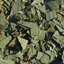 Eucalyptus feuille (100g)