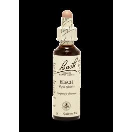 Beech (20ml)