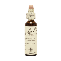 Clematis (20ml)