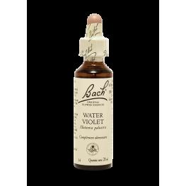 Water Violet (20ml)