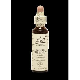White Chesnut (20ml)