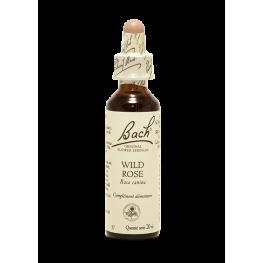 Wild Rose (20ml)