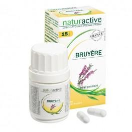 Bruyère (bt 30)