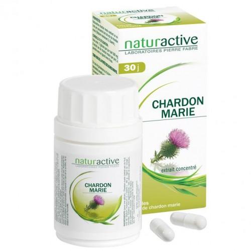 Chardon Marie (bt 60)