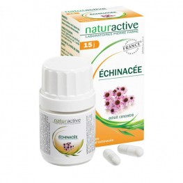 Echinacée (bt 30)